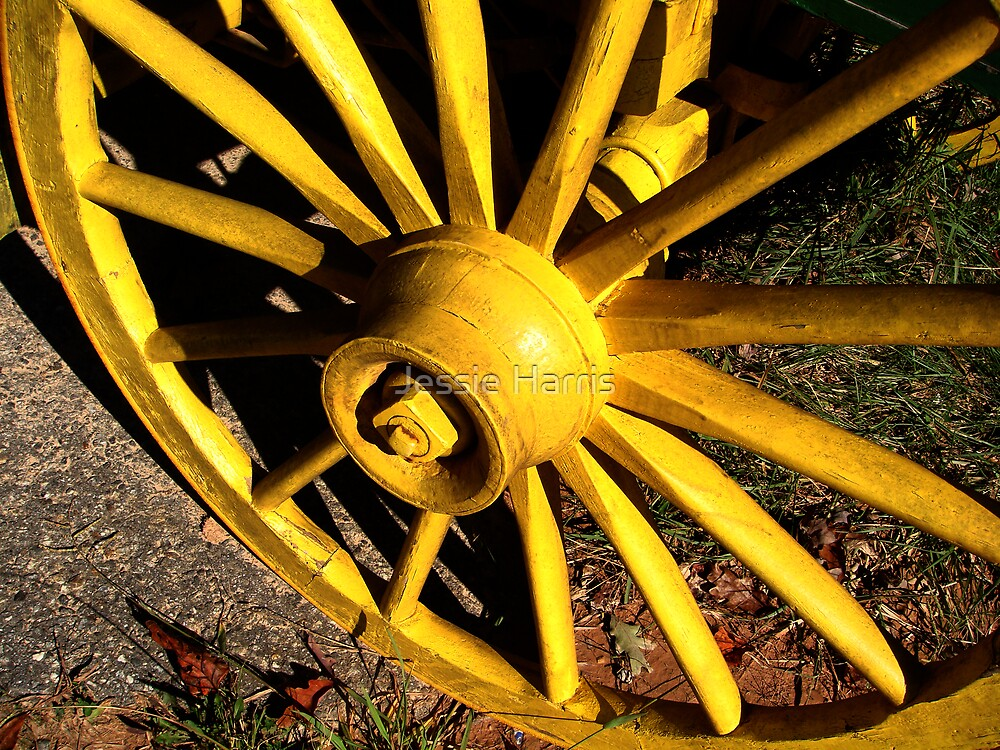 Wheel by Jessie Harris