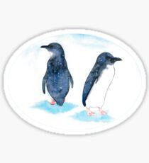 Little Blue Penguins Sticker