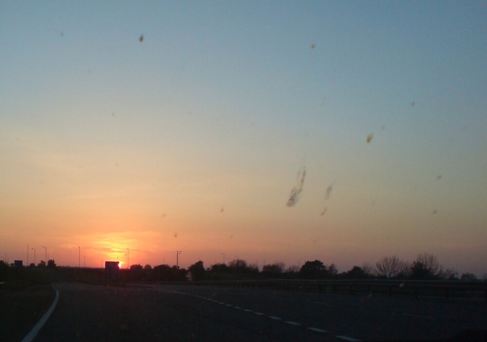 Sunset Blazing On The Horizon by Steven Irwin