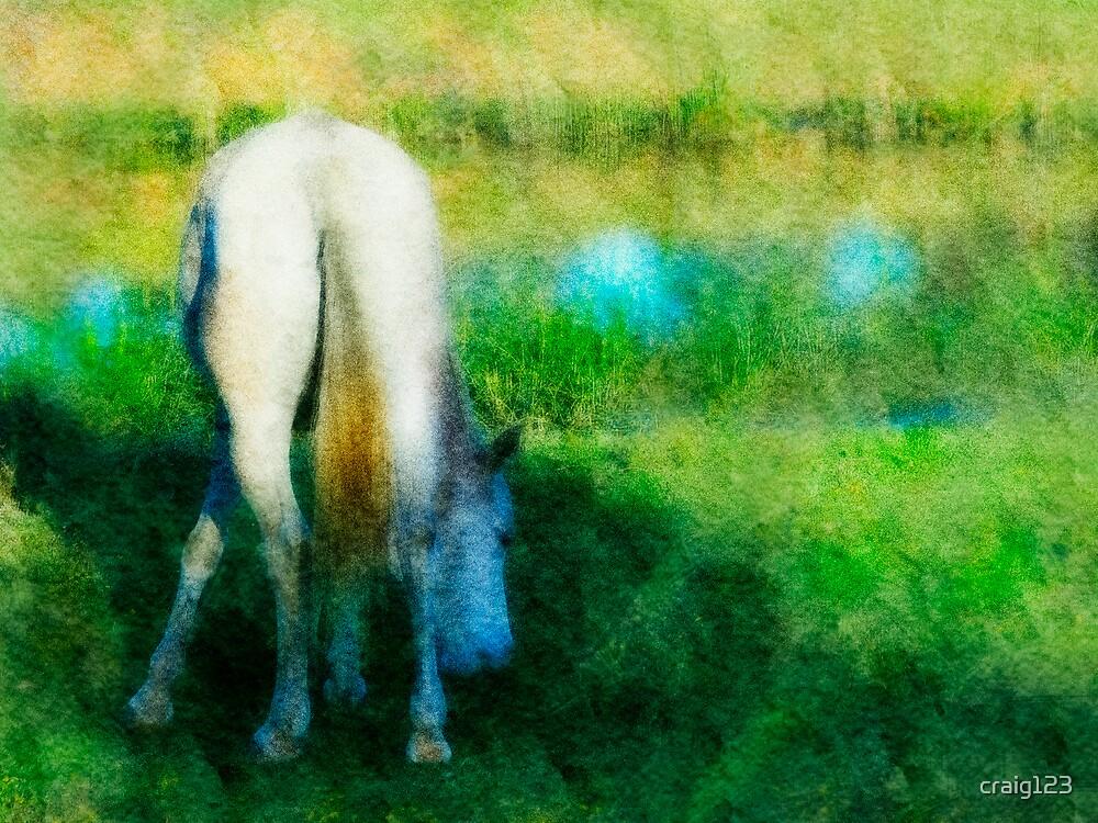 Horse near a pond by craig123