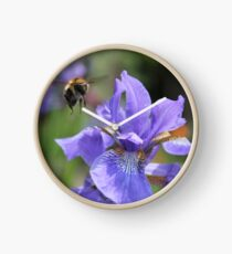 Purple Iris Clock
