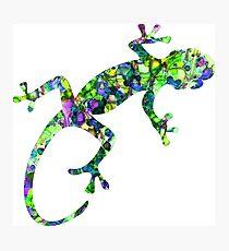 Tie-Dye Gecko Photographic Print
