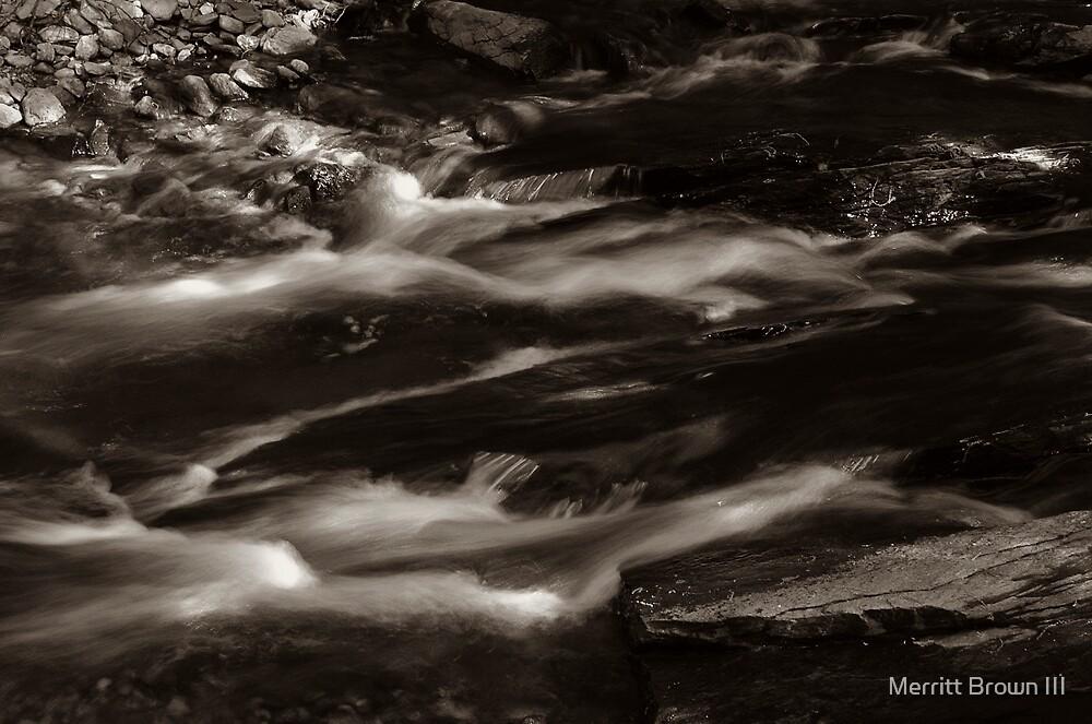 Small Stream #2 by Merritt Brown III