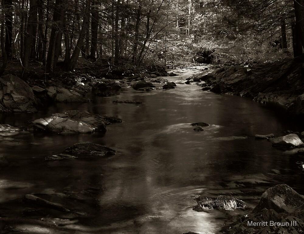 Small stream #3 by Merritt Brown III