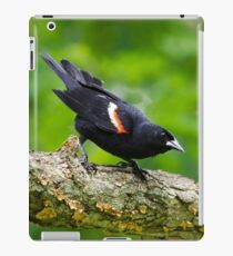 Red Winged Blackbird iPad Case/Skin