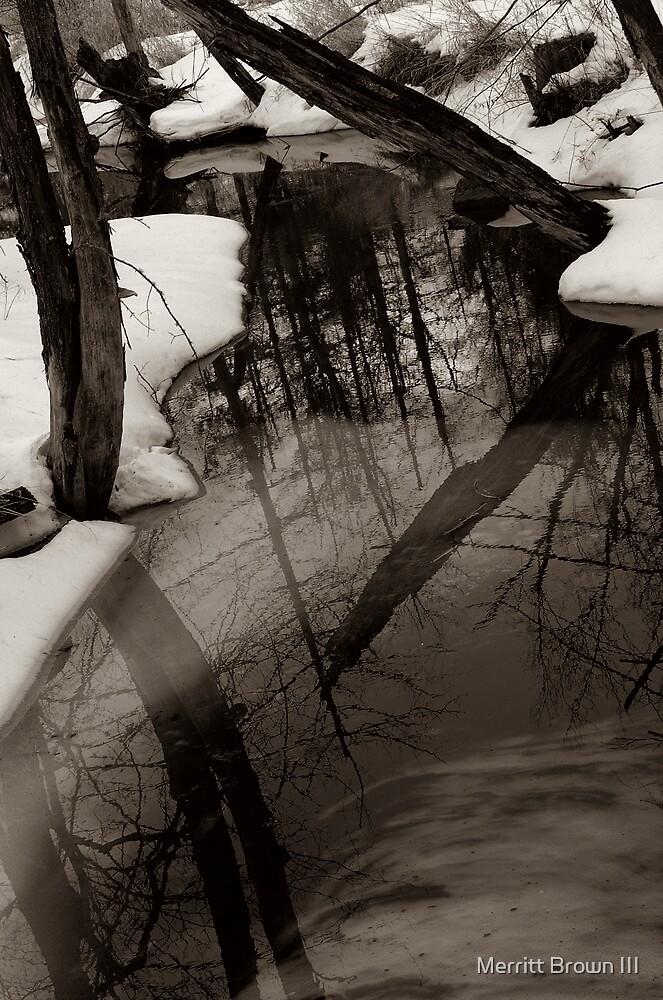 Winter Thaw by Merritt Brown III