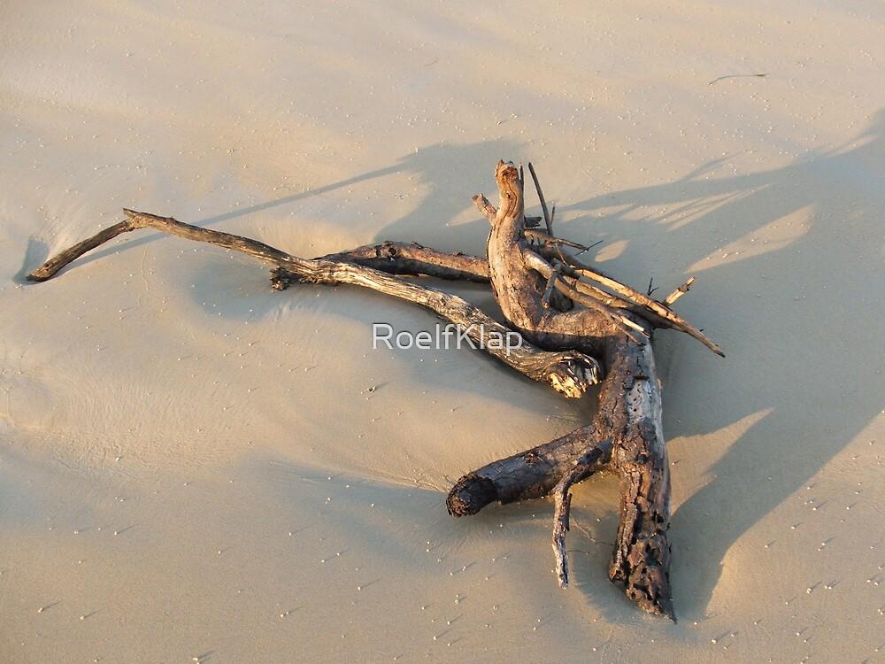 Driftwood by RoelfKlap