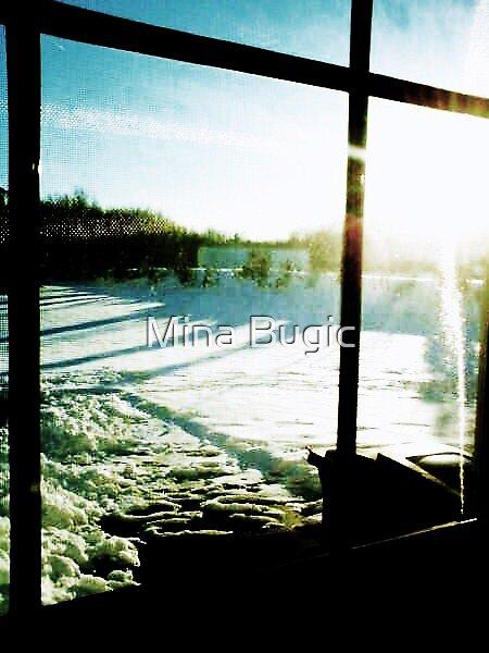 Winter Sun by Mina Bugic