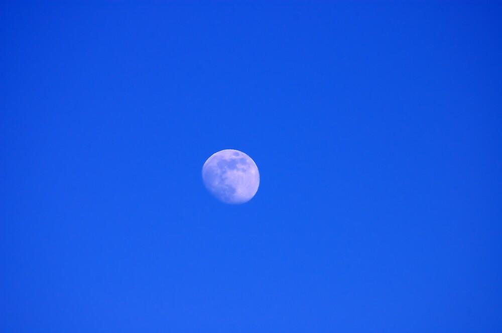 Blue Moon by renofog