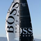 Hugo Boss II by amykphotography