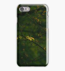 Beautiful Green iPhone Case/Skin