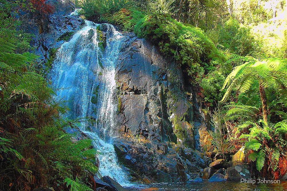 Stephenson Falls- Marysville , Yarra Ranges National Park Victoria Australia by Philip Johnson
