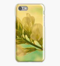 White Milkvetch Wild Flower Macro iPhone Case/Skin