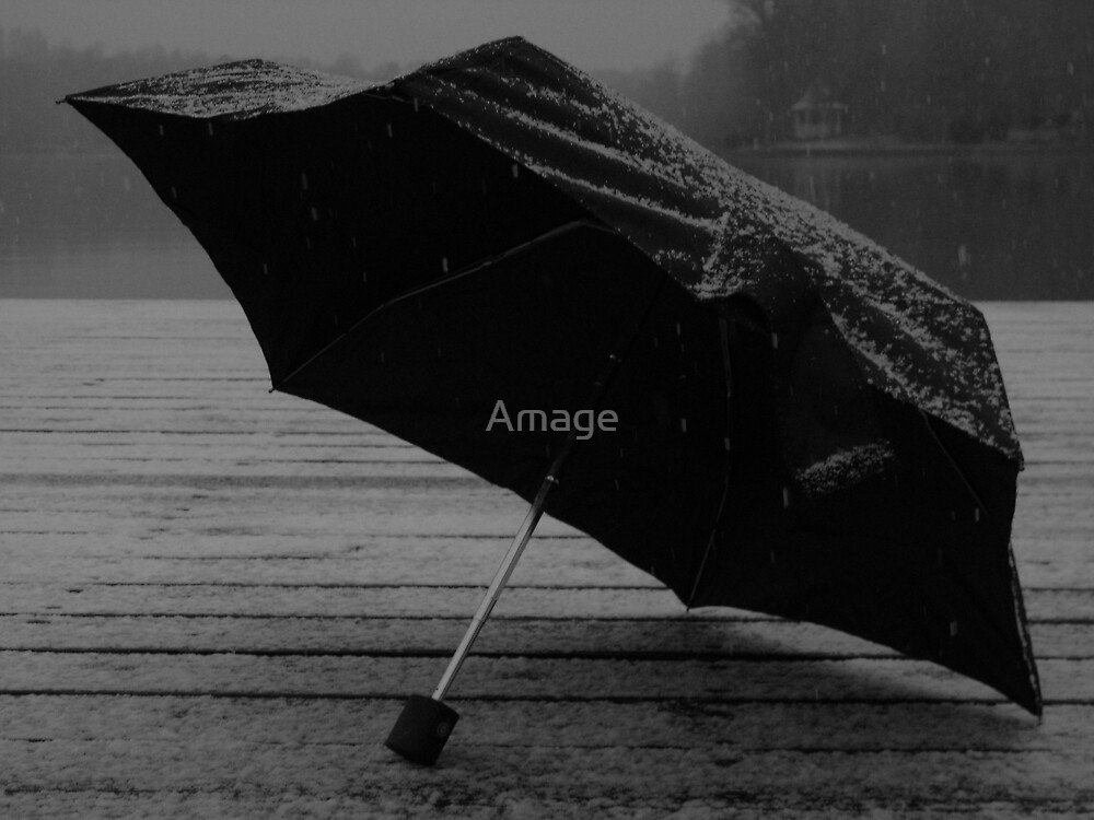 Snowy Umbrella by Amage