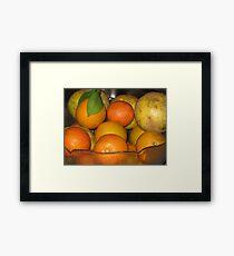 Citrus Framed Print