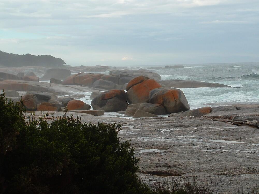 Bicheno Rocks by Mark Potter