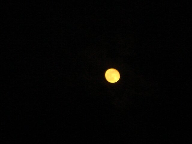 Full Moon by Dario  da Silva
