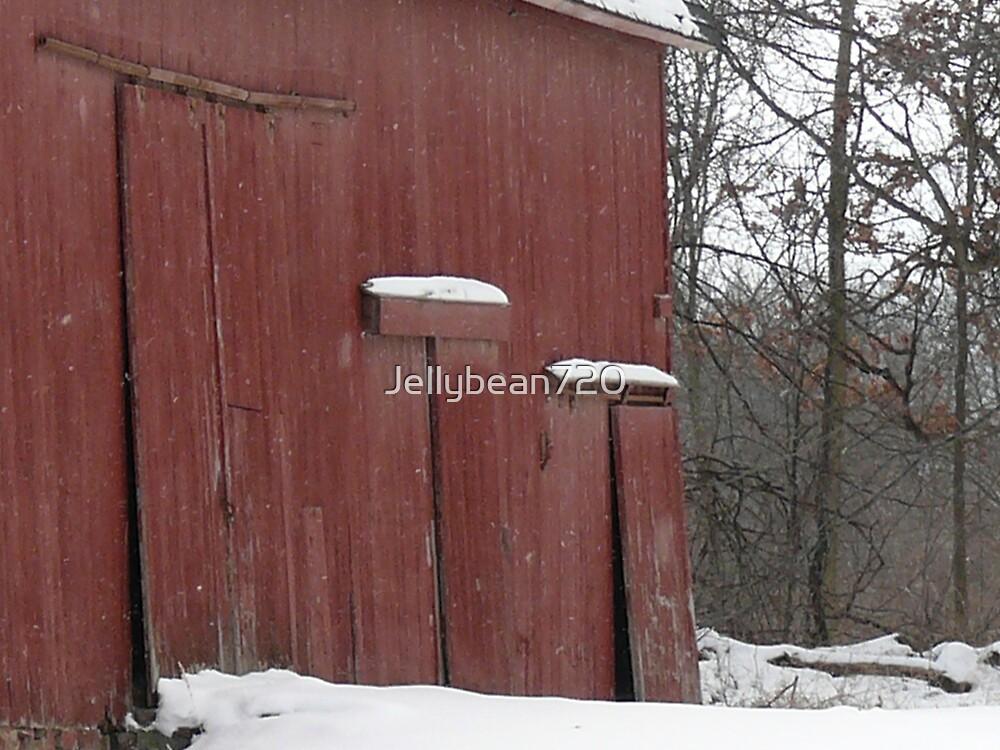 The Barn Door by Jellybean720