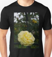 Collection of light yellow roses Unisex T-Shirt