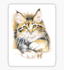 Cute Calico Maine Coon Kitten Sticker