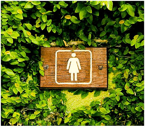 Public Toilet Sign by xadium