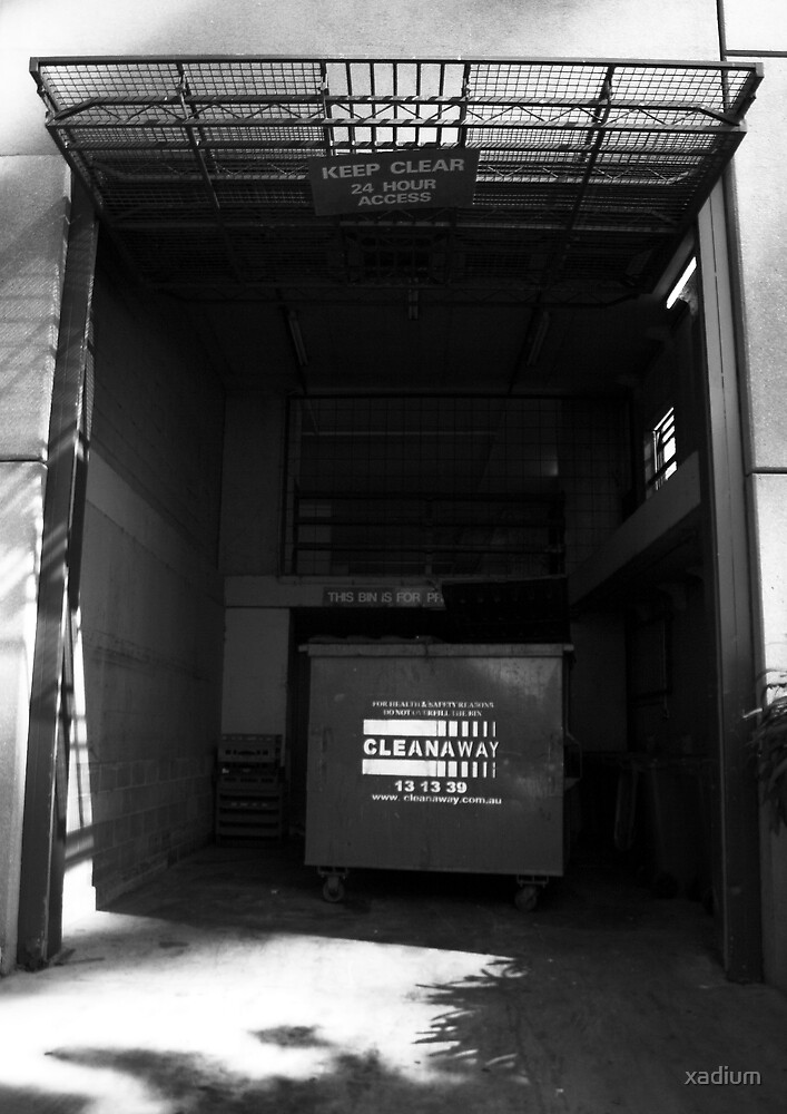 Alleyway Dumpster, Melbourne by xadium