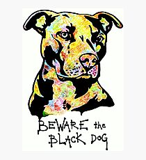 Beware the Black Dog by Pasha du Valentine Photographic Print