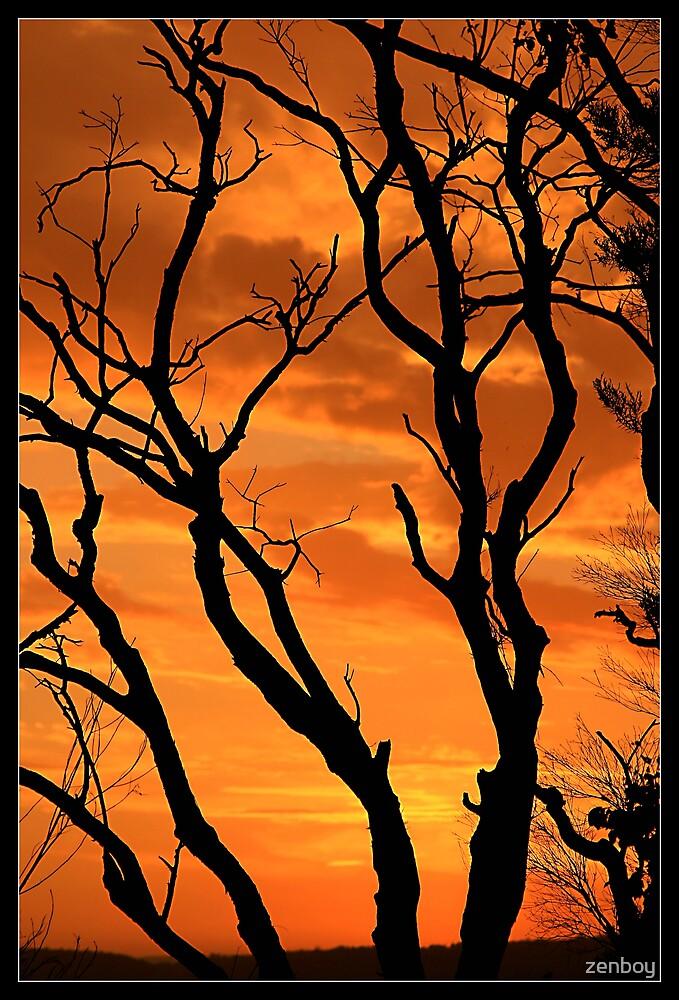 Sunset by zenboy