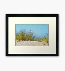 Beach Grasses in the Dunes Framed Print