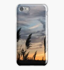 painterly iPhone Case/Skin