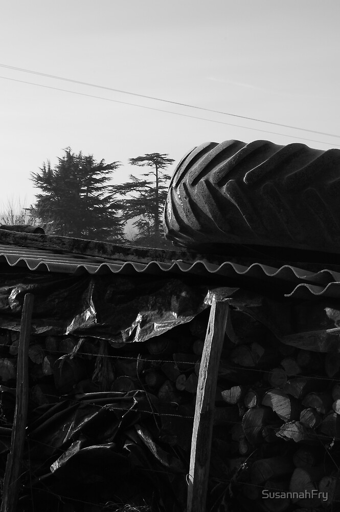 Log Pile with Tyre by SusannahFry
