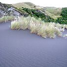 New Zealand  2008 by TomNelson