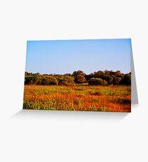 Bushland Greeting Card