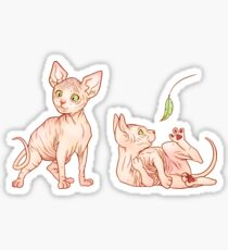 Sphynx Kittens Sticker