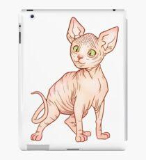 Sphynx Kittens iPad Case/Skin
