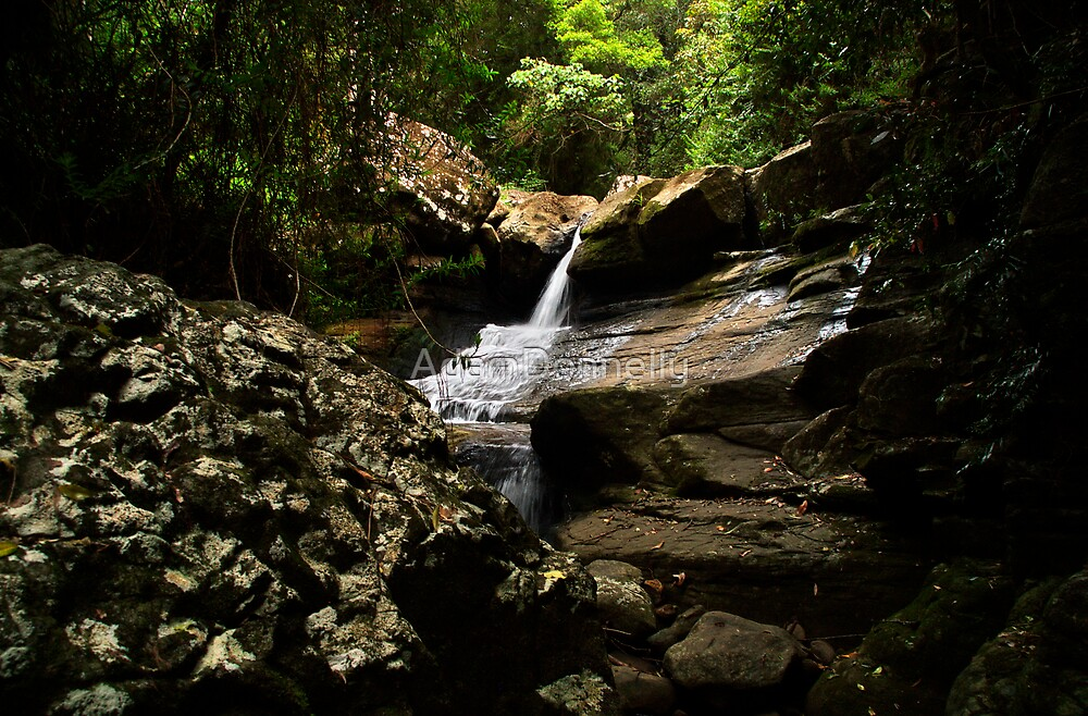 Buderim by AdamDonnelly