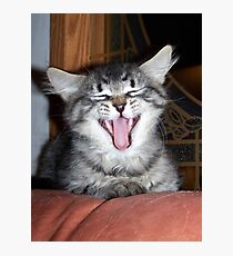 belly laugh Photographic Print