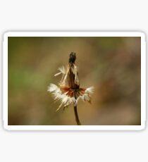 Flower Remnants Sticker