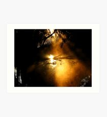 Golden Mist.... Art Print