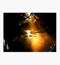 Golden Mist.... Photographic Print