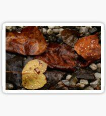 Autumn Remnants Sticker