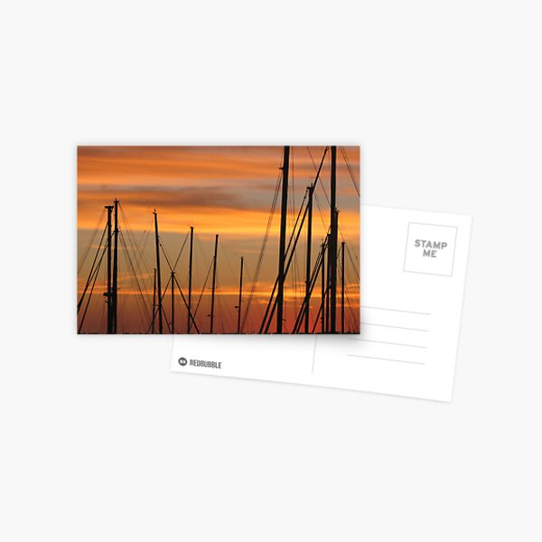 Marina Masts Postcard