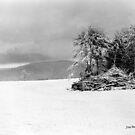 Field of Snow by © Joe  Beasley IPA
