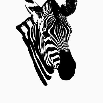Zebra abstract by fljac