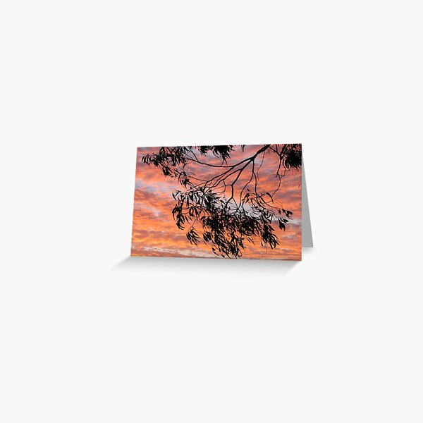 Sundown Silhouette Greeting Card