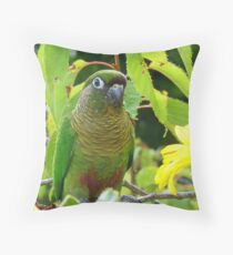 Walk On The Wild Side - Maroon-Bellied Conure - NZ Throw Pillow