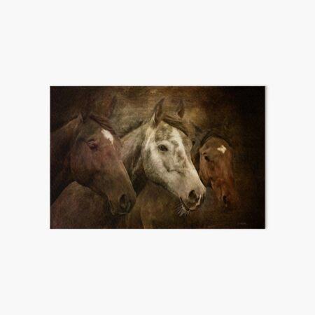 Wild Horses Art Board Print