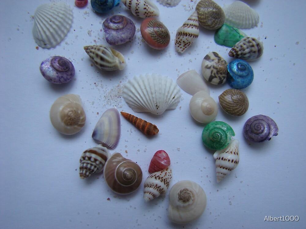 Memories of the sea #1 by Albert1000