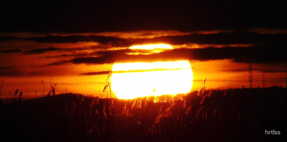 Sunset by hrtlss