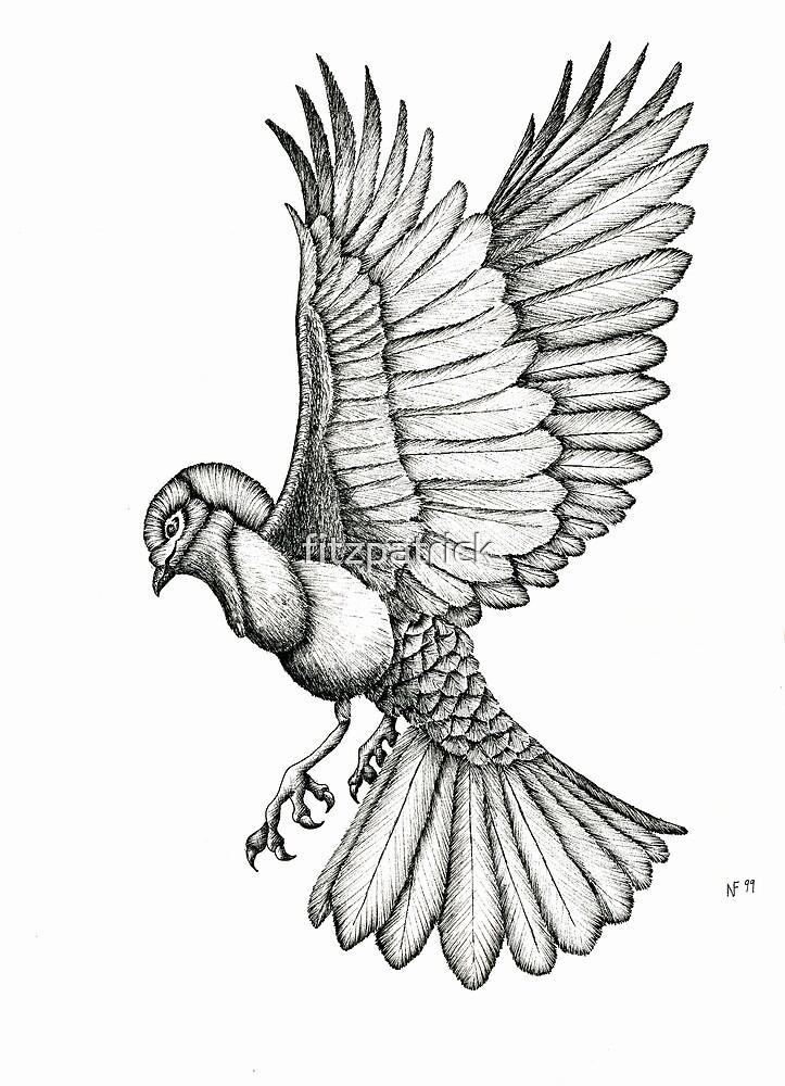 little bird full of grace by fitzpatrick